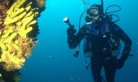 Diving Croatia